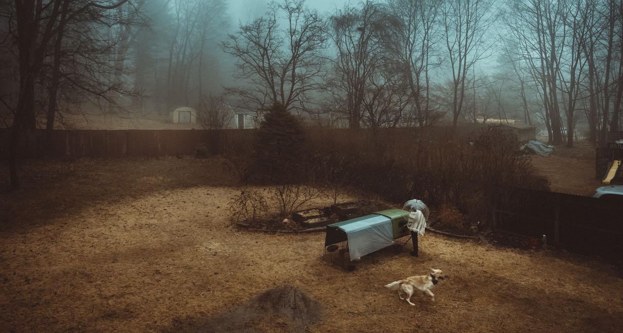 Un allevatore che raccoglie le uova in autunno